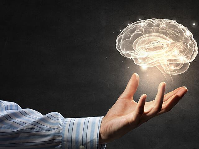 Hafızanızı Geliştirmeyi Öğrenin, Ne, Nasıl, Nerede, Ne Zaman, Neden, Kim